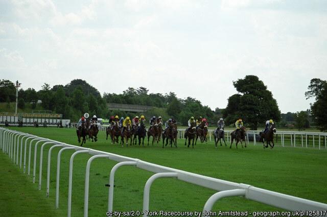 York Racecourse Runners