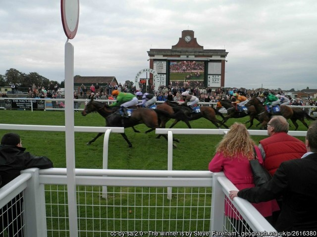 Ripon Racecourse Finish Line